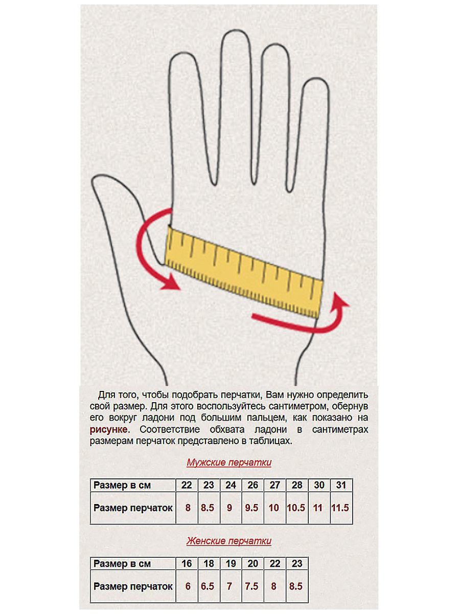 glove_sizes